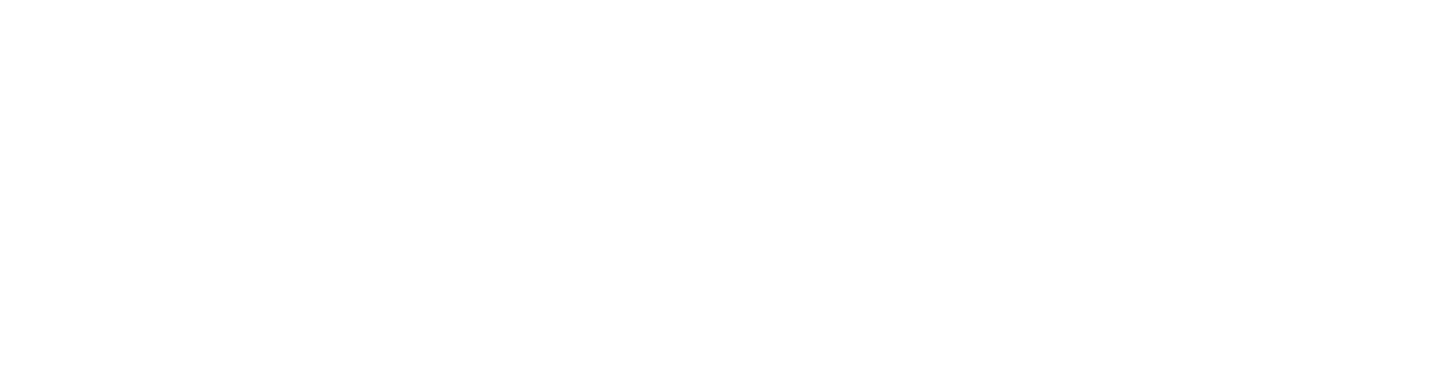 slee-production-inc